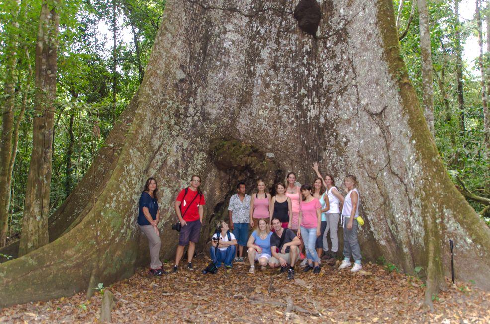 Gruppe Dschungel Peru