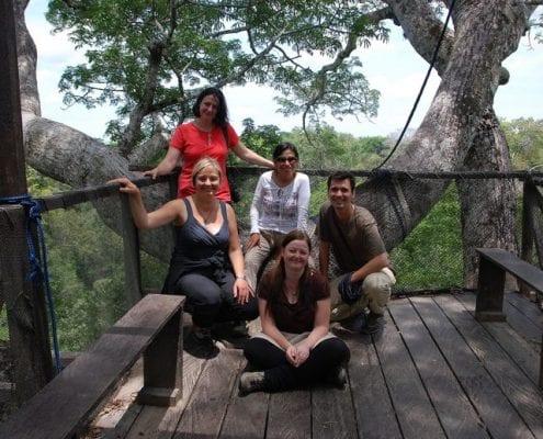 Baumgipfel Wandern Dschungel Peru