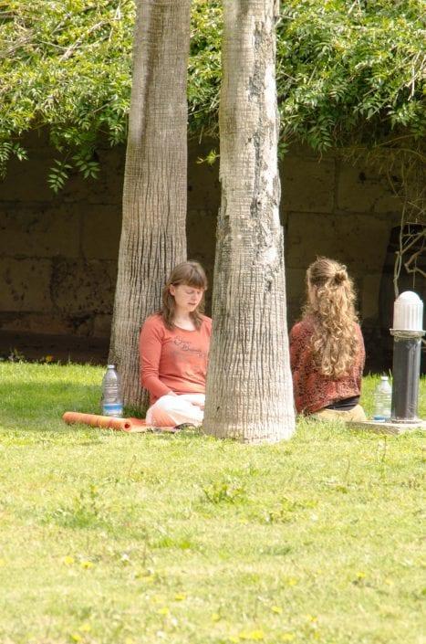 Frauen & Bäume